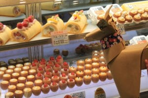 DOG and Japanese cakes.