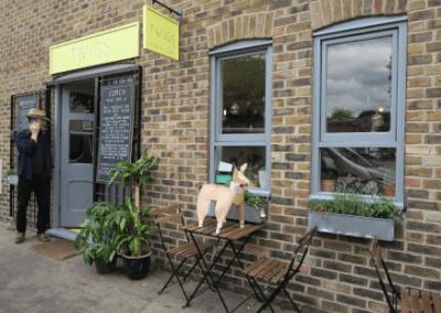 DOG at Twigs cafe hackney