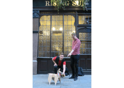DOG at the rising sun
