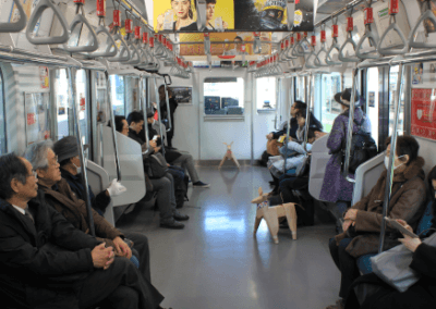 DOG on Tokyo subway