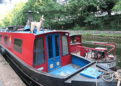 DOG on narrowboat