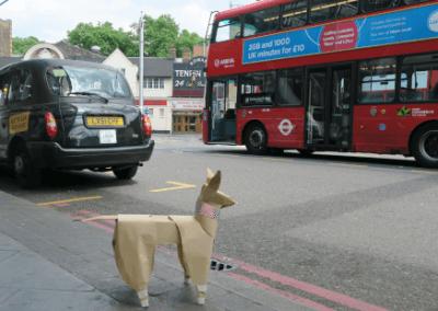 DOG taxi bus