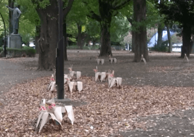 DOGs amongst the leaves