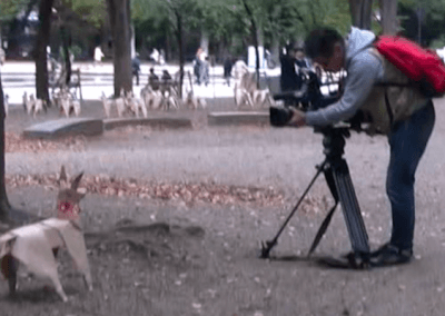 Television crew recording DOG