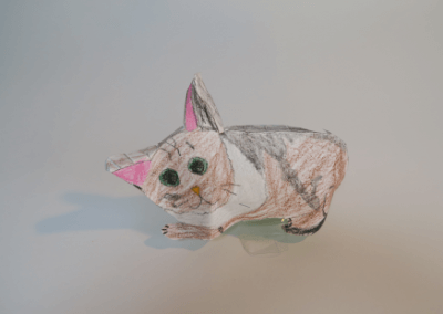 Gekkohara Cat