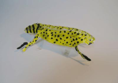 Gekkohara Leopard