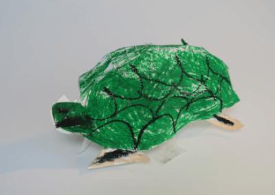 Gekkohara Turtle