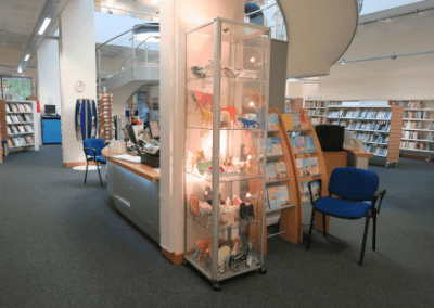 WGC Library 02
