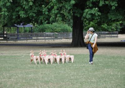 Akane Takayama and her DOGs
